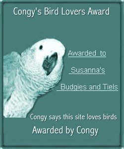 Congy's Bird Lovers Award